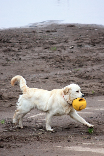 No I don't mind the mud because I love my ball