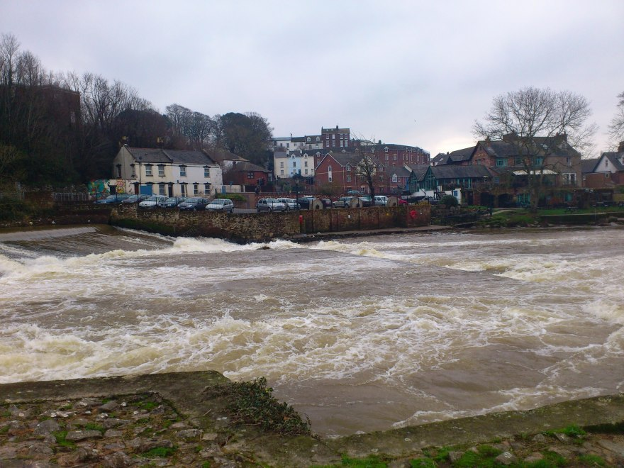 The Mill On the Exe