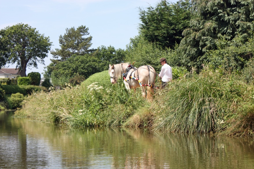 July The Grand Western Canal