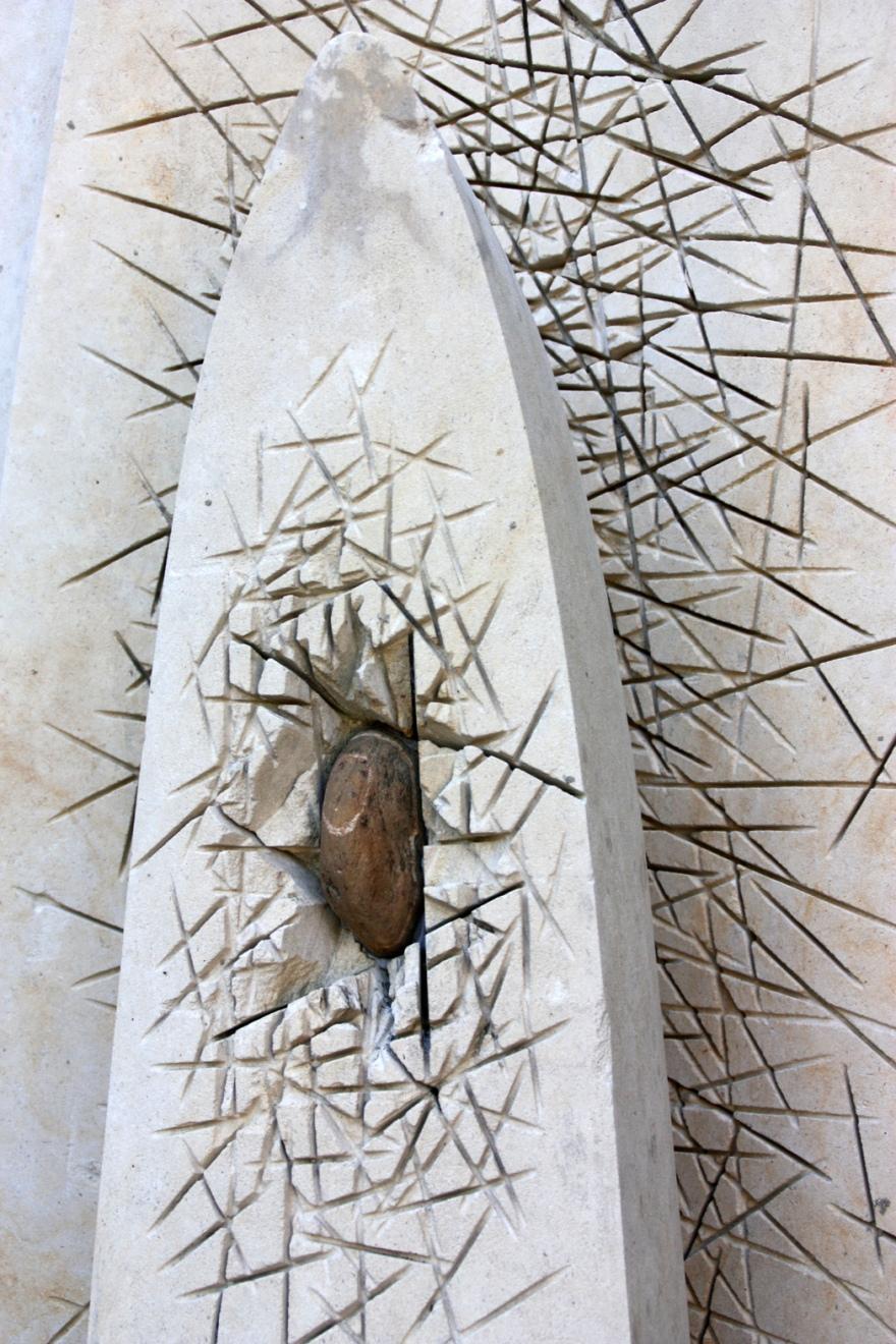Thorns?