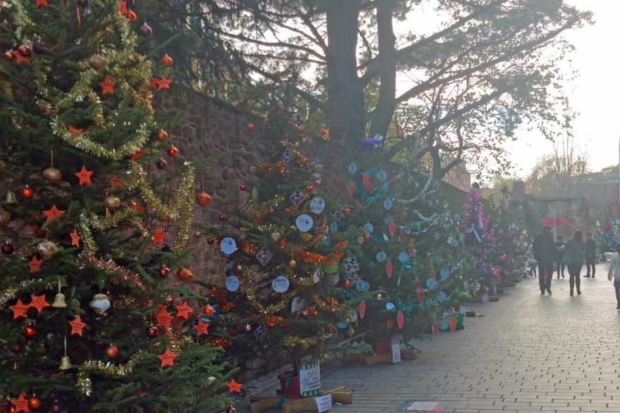 charity trees