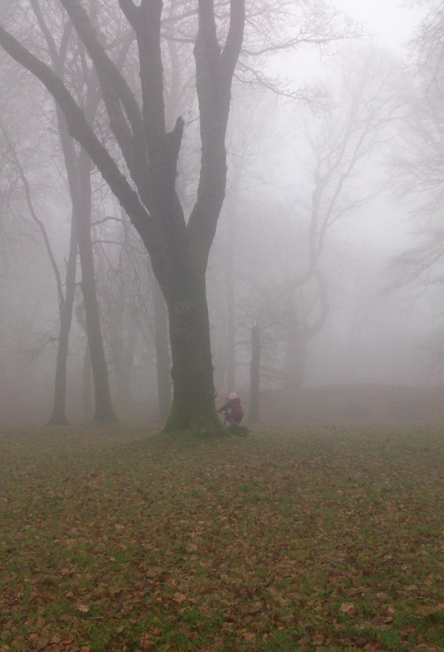 Misty Lou