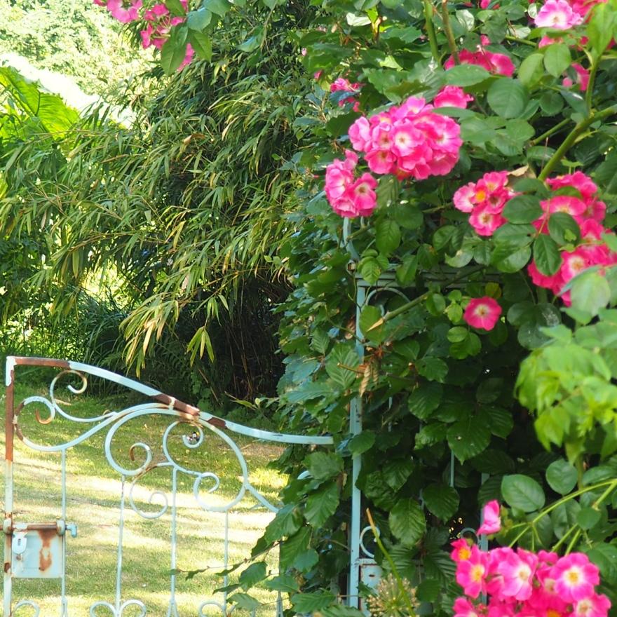 Burrow Farm Garden