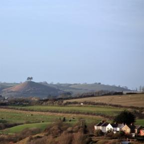 Colmer Hill