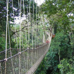 Kakum, Ghana canopy lines